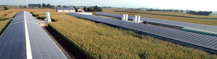 Delibera AEEG 243/13: adeguamento di tutti gli impianti fotovoltaici